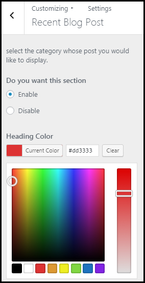 Color palette in WordPress theme